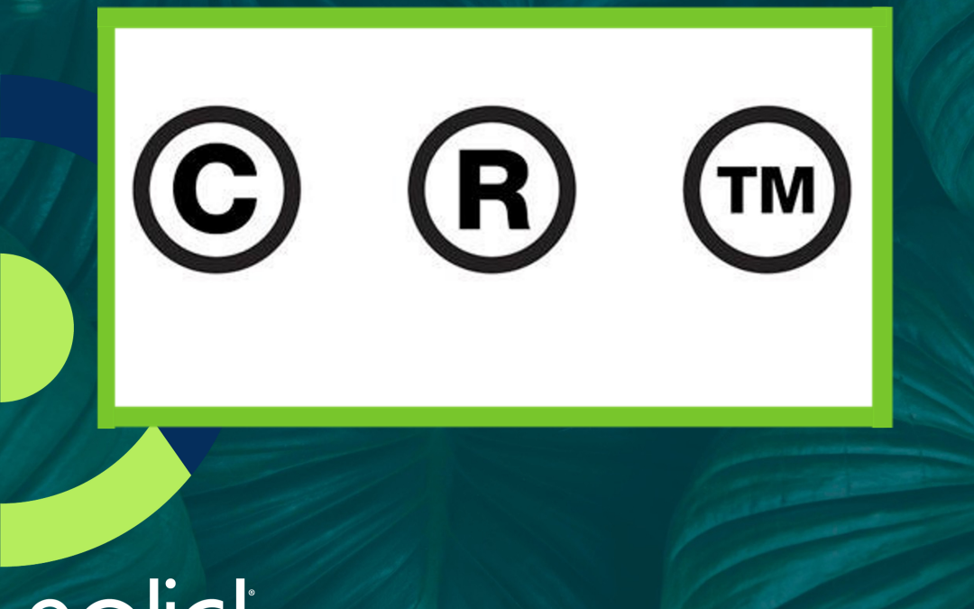 Trademark and Copyright Notice Symbols ® ™, ℠ and ©